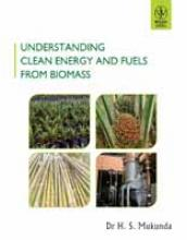 Book Cover, Understanding Clean Energy and Fuels from Biomass